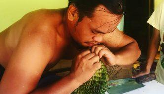 Rumble in the Jungle – Eating in Padawan